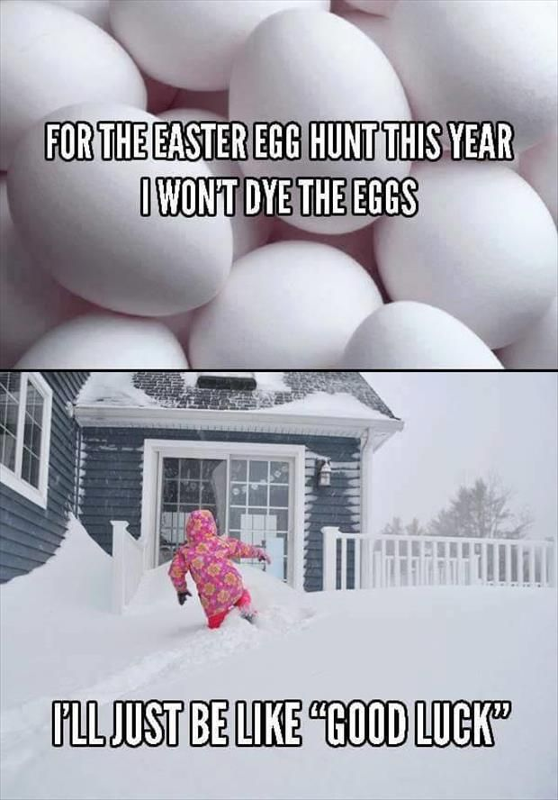 Funny Pictures Of The Day 80 Pics Funny Easter Memes Easter Quotes Funny Easter Humor