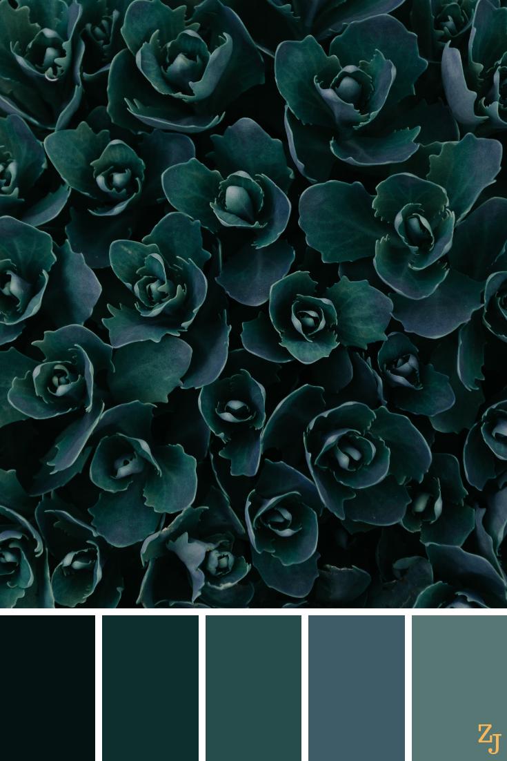 ZJ Colour Palette 828 #colourpalettes #colourinspiration #darkgreenkitchen