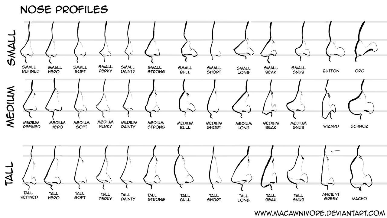nose shapes and names - 1200×677