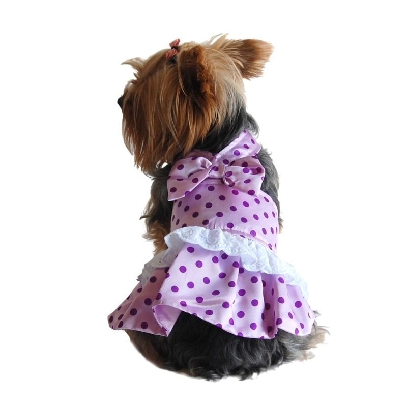 This is a BasAcc apparel for pet dog and cat. Light satin fabric.