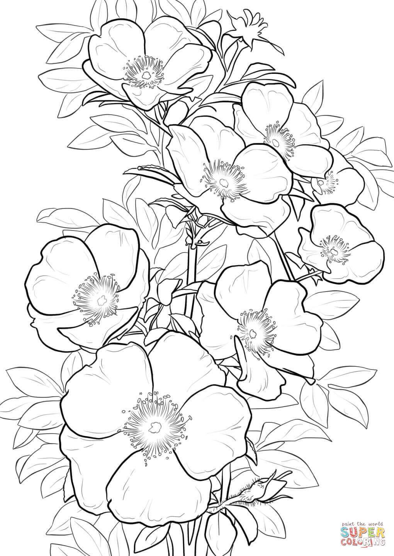 Открытки, открытки с цветами для распечатки