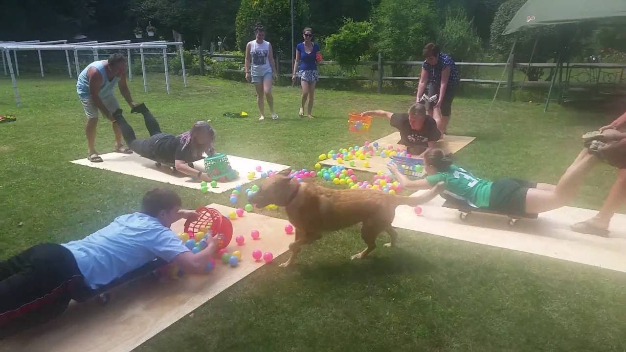 Human hungry hungry hippos family fun day 2016 video 1