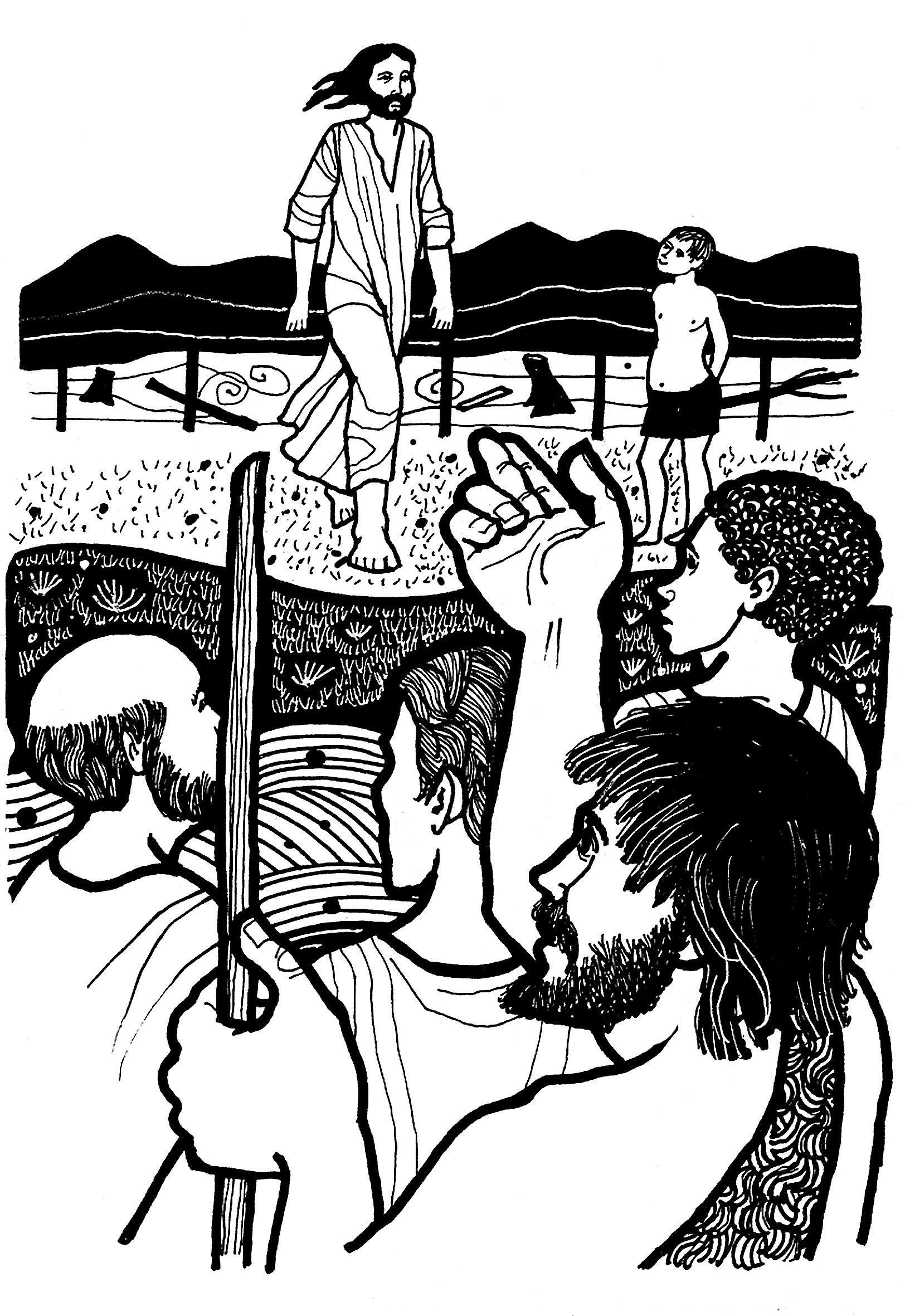 Evangelio Segun San Juan 1 29 34 Del Domingo 15 De