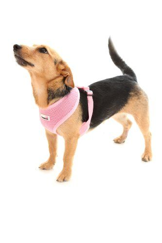 Doodlebone Dog Harness Pink Extra Small Learn More By Visiting