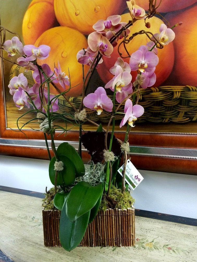 Rustic Beauty Orchids Orchid Arrangements Orchids Orchid Centerpieces