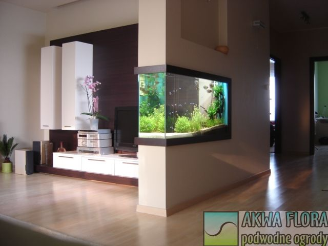 Partition wall aquarium cool fish tank ideas pinterest gardens search and furniture - Fish tank partition wall ...