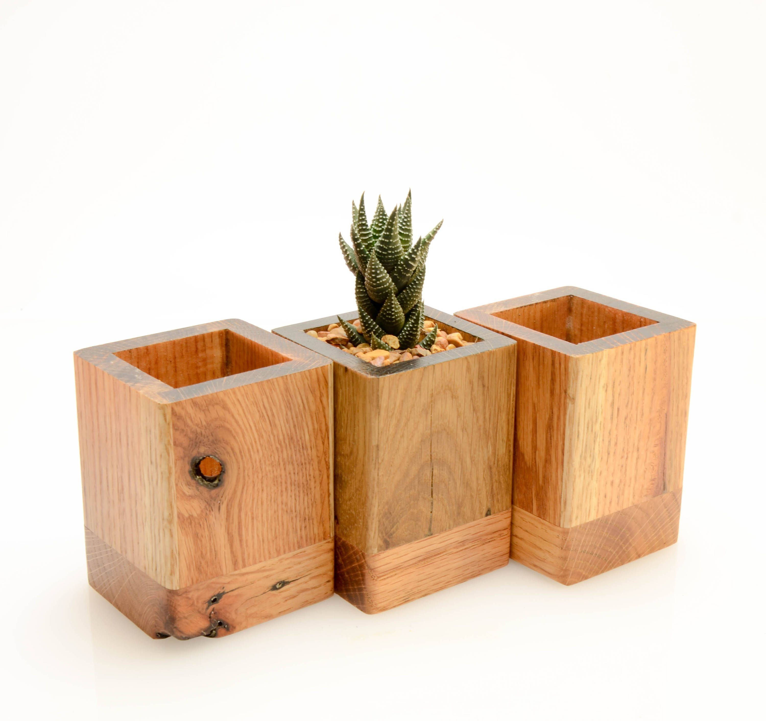 These Small And Unique Planters Are A Perfect Addition To Any Desk Great For Air Plants And Small Succulent Wood Succulent Planter Wood Planters Planter Boxes