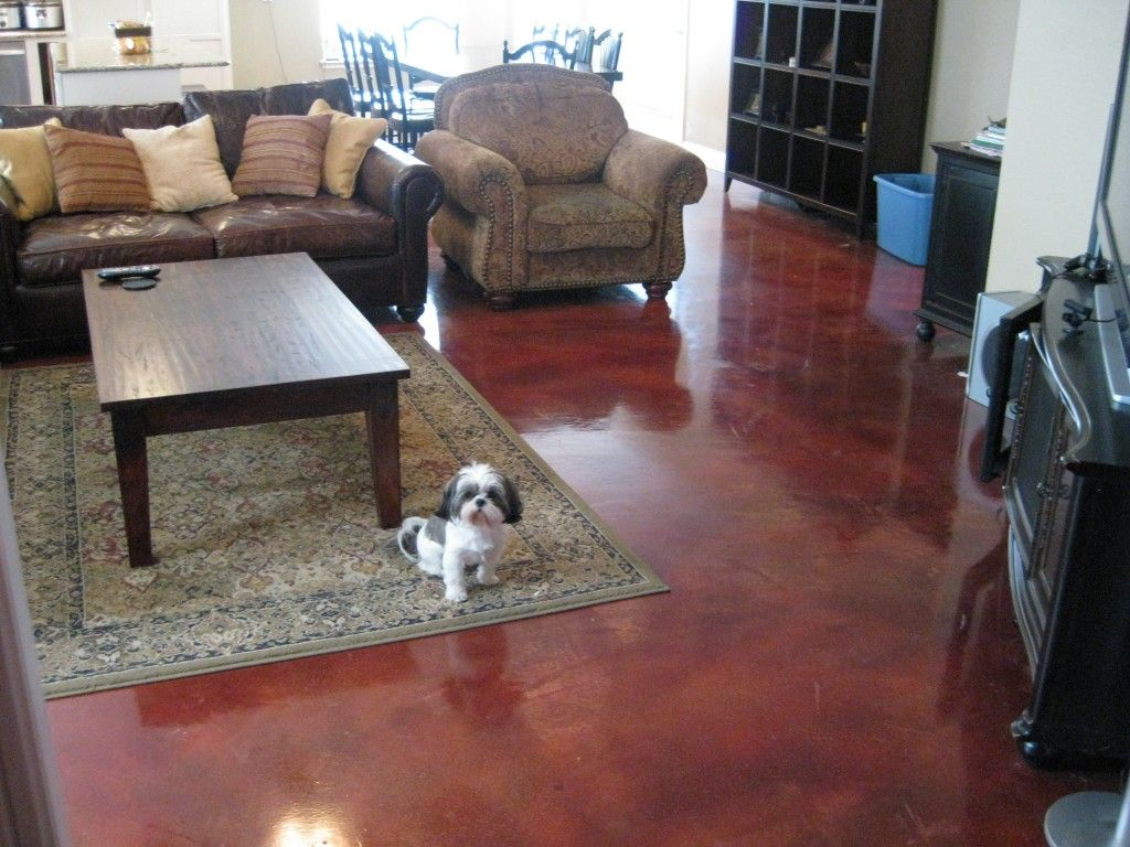 Interior concrete floors gallery residential interior for Indoor cement flooring