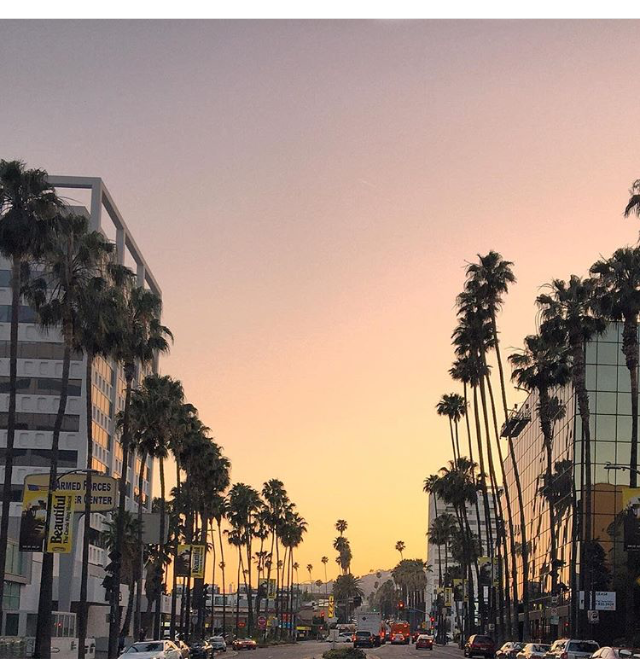 Los Angles is  one of the top 10  most Instagrammed Cities in the world. It's palm lined streets and iconic sunsets are sure to lure you in.