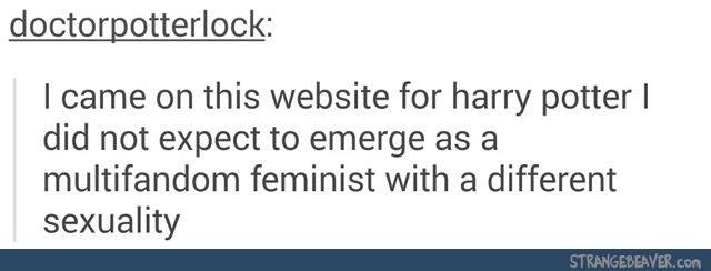 Multifandom Feminist With A Different Sexuality Harry Potter Tumblr Tumblr Funny Fandoms Tumblr Tumblr