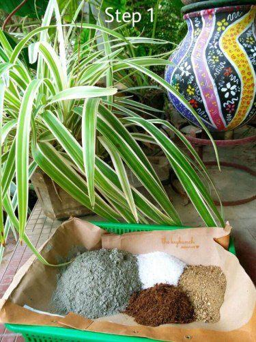Mix Cement Perlite Coco Peat Sand Well Diy Hypertufa Planter With Akila Krithivasan The Keybunch Decor Blog Decorating Blogs Hypertufa Diy