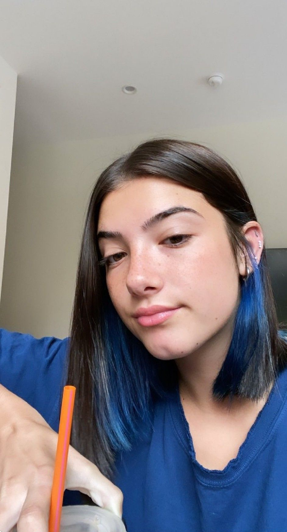 Pin by 𝙿𝚛𝚒𝚜𝚑𝚊 𝙶𝚞𝚗𝚐𝚊𝚑 on Charli in 2020 | Blue hair, The