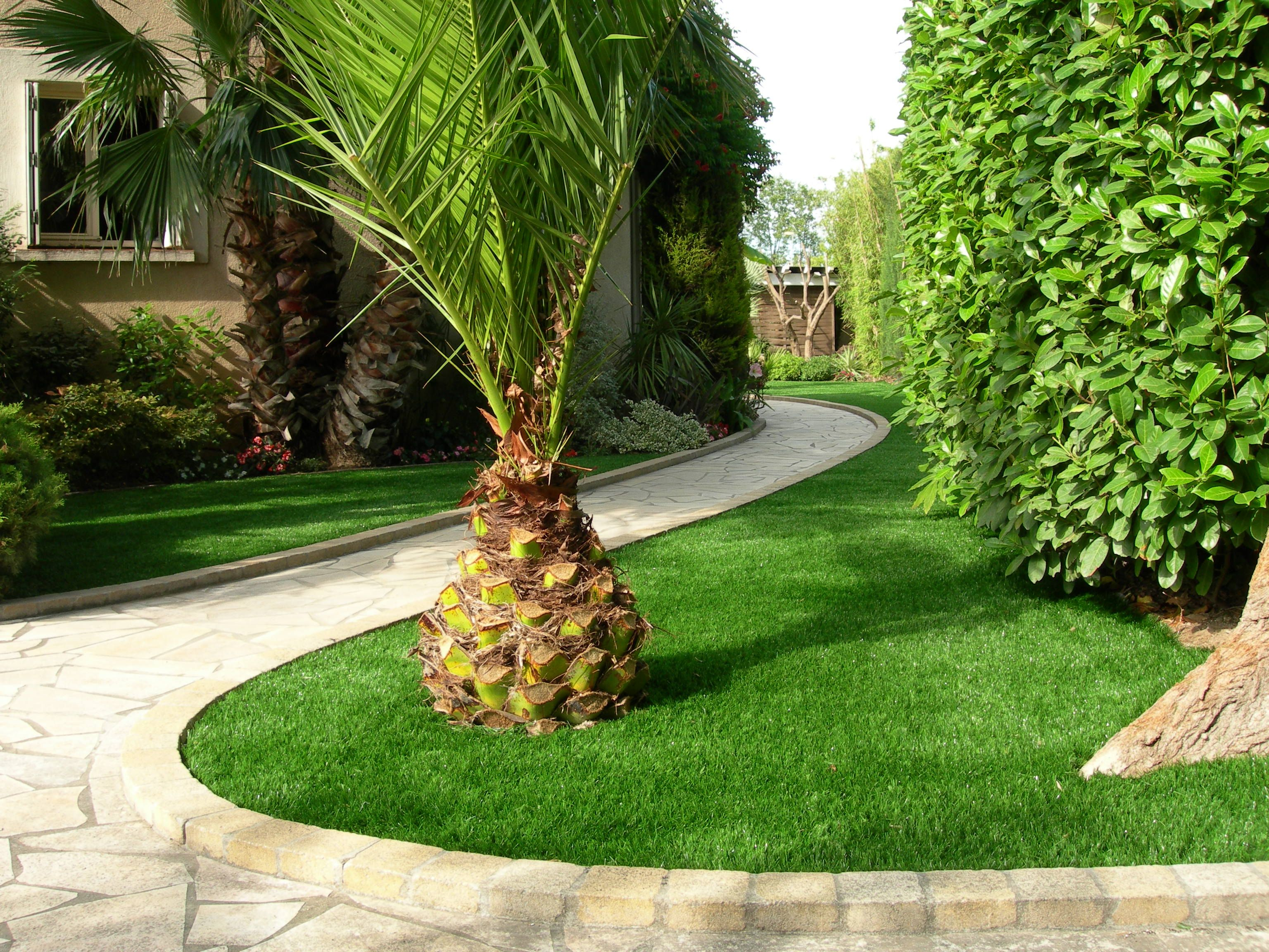 Gazon synth tique stargreen stargreen pinterest for Devis gazon jardin