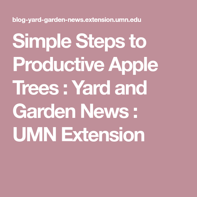 Simple Steps To Productive Apple Trees : Yard And Garden
