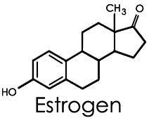 Photo of Östrogen – ein Hormon, das stark geschädigt ist,  #chemicalmoleculetattoo #das #ein #geschädi…