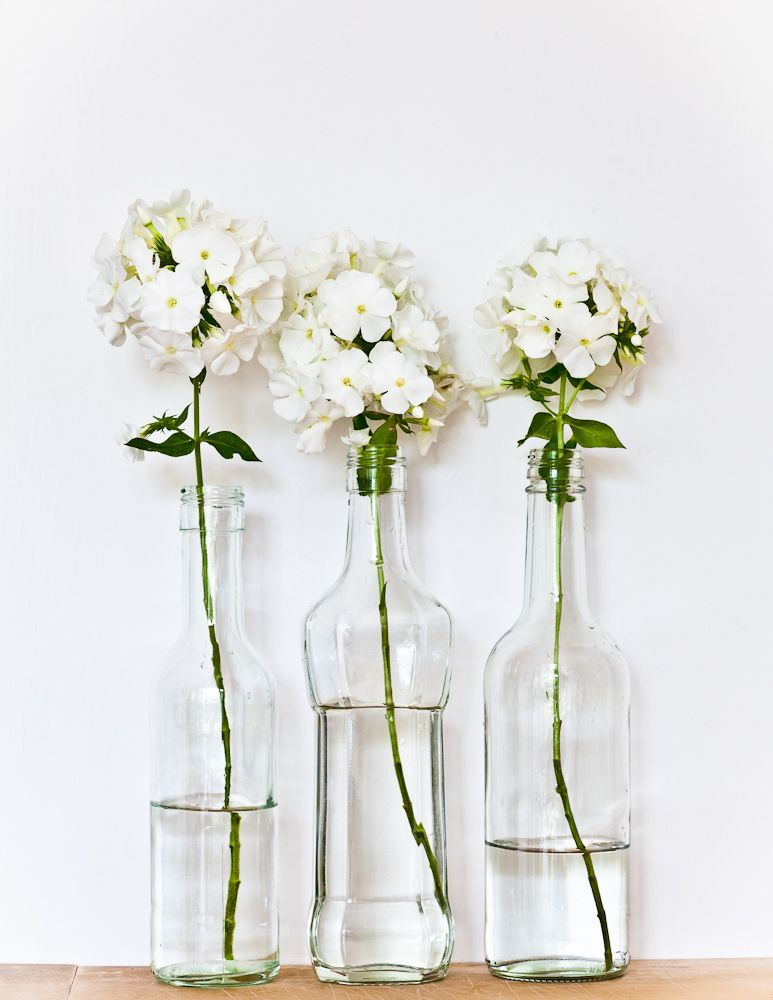 Befreewithfashion Flowers For Me Pinterest Flowers White