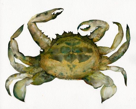 Crab Watercolor- Archival print, Nautical art, beach, ocean via Etsy