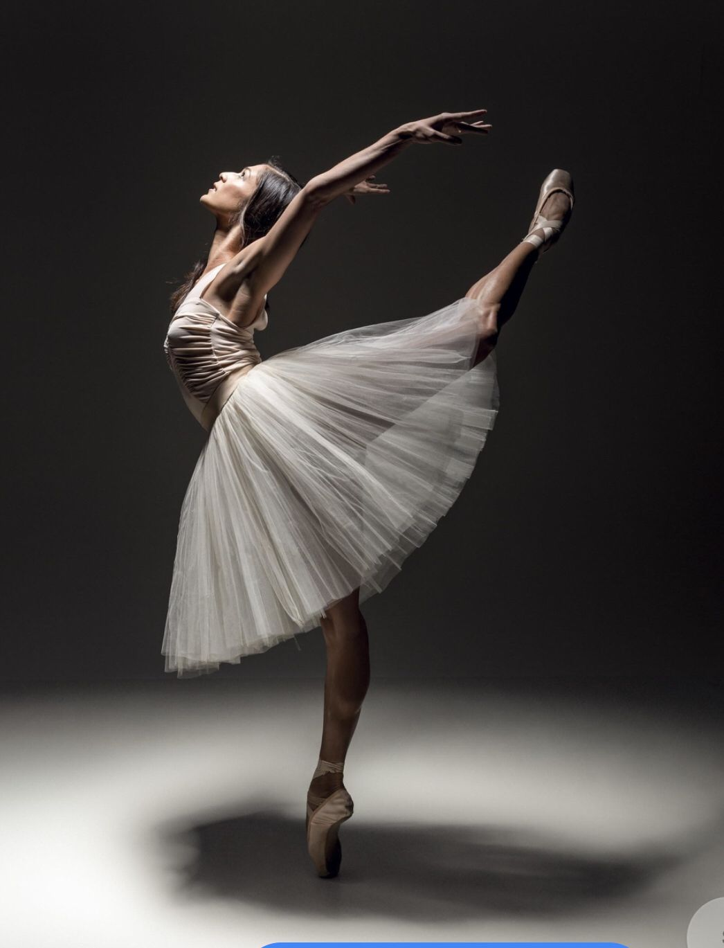 e00d6f62d2643d At a first glance this ballerina looks so graceful And gentle. But in truth  her