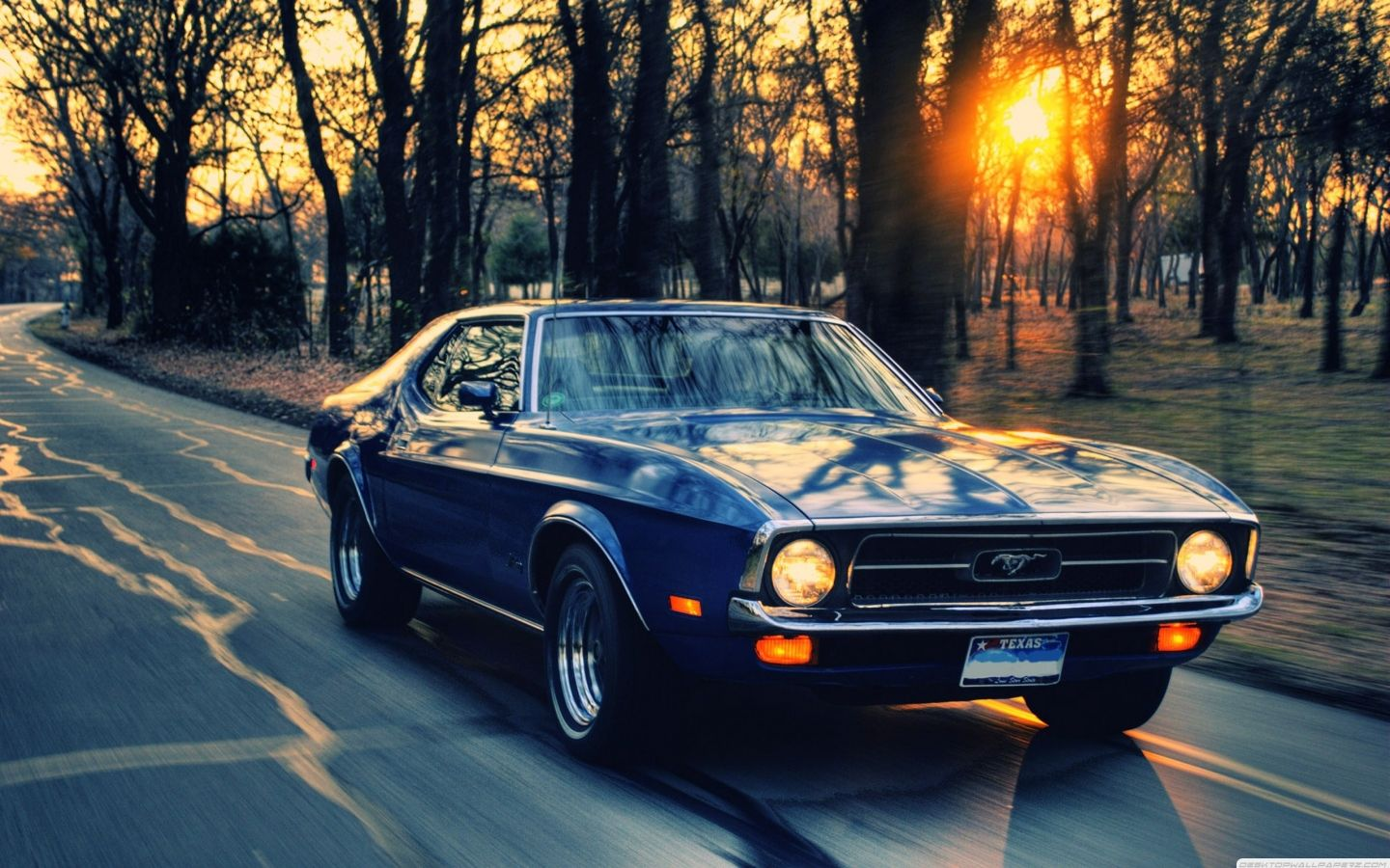 Ford Mustang Love It Want It Classic Cars Muscle Car Wallpapers Muscle Cars Mustang