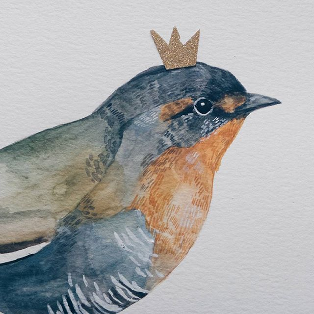Hola soy el Rey Chucao #illustration #ilustración #watercolor #acuarela #chucao #avesdechile #chile #bird