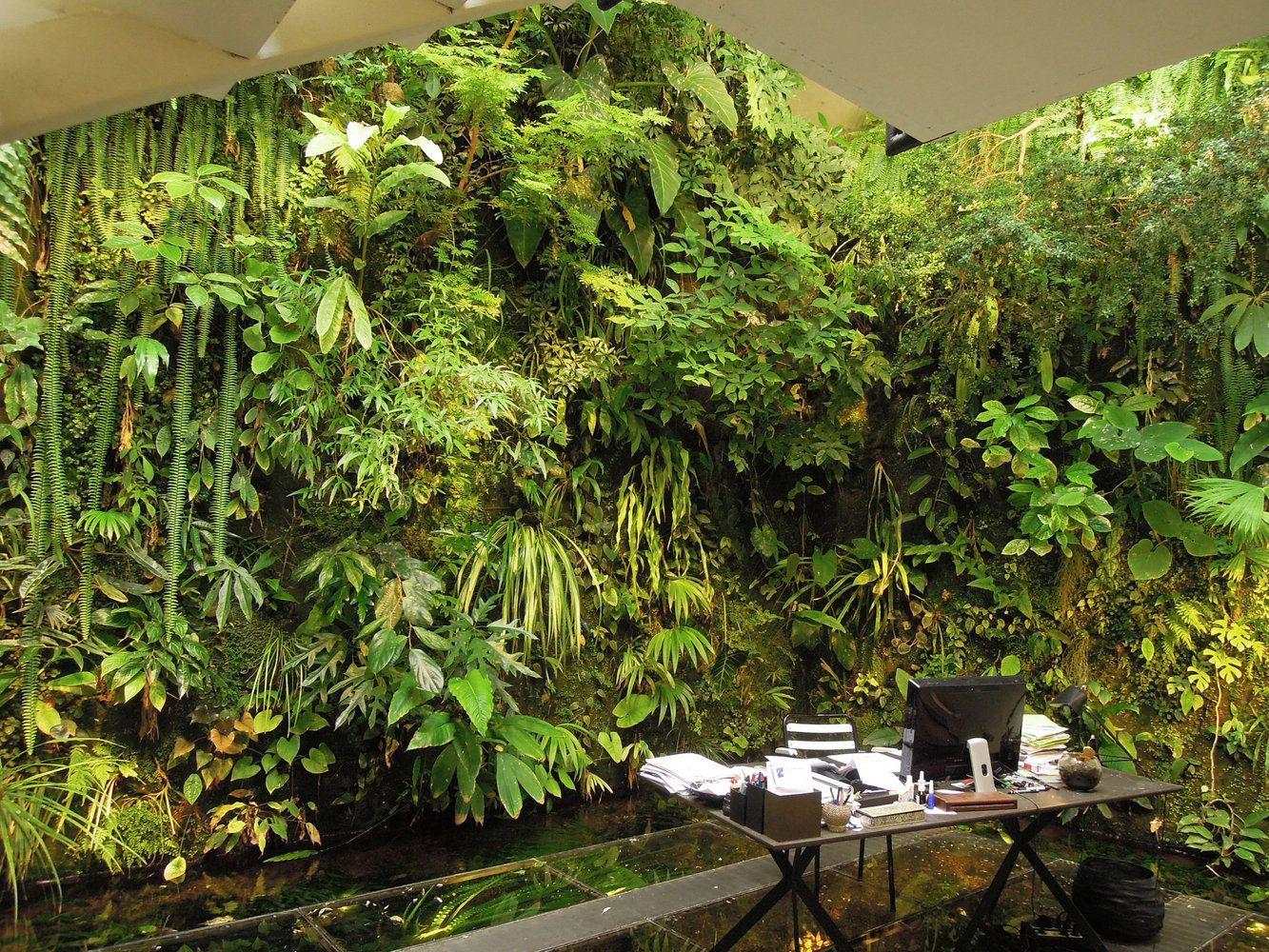 maison de patrick blanc mur vegetal patrick blanc v g taux jardins jardins verticaux et. Black Bedroom Furniture Sets. Home Design Ideas