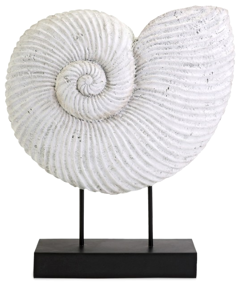 Nautical Shell Fossil Faux On Pedestal Stand Http Www Pletely Coastal 2017 01 Seashells C Driftwood Stands Html