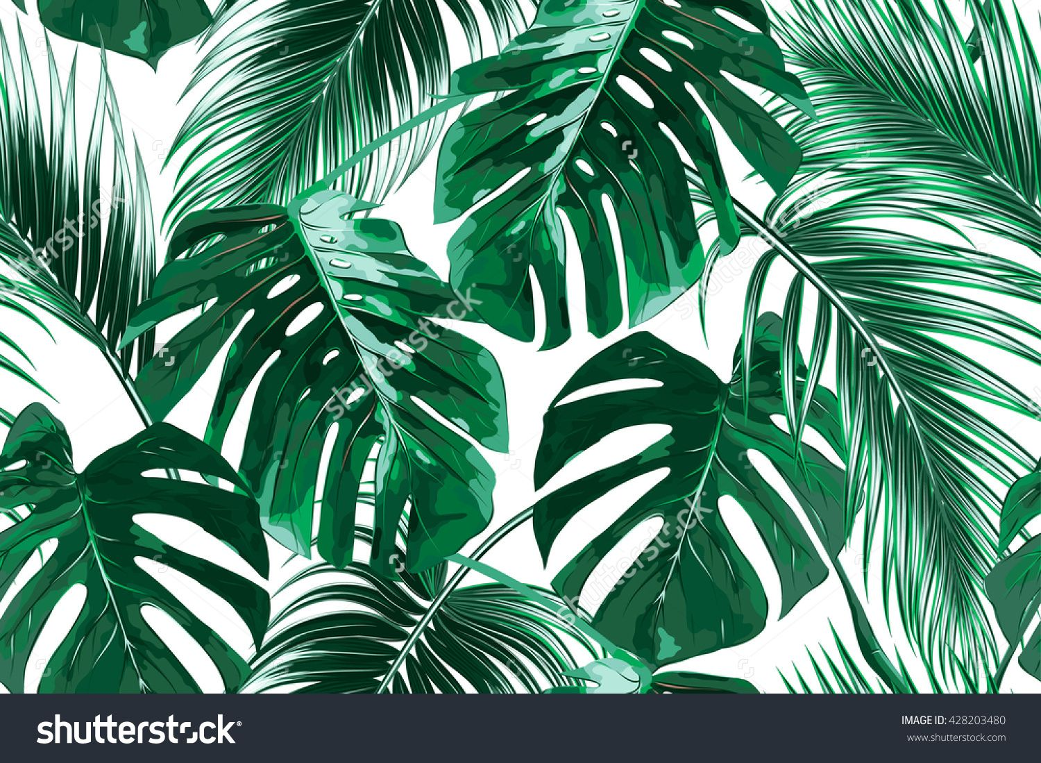 Tropical palm leaves, jungle leaves seamless vector floral ...