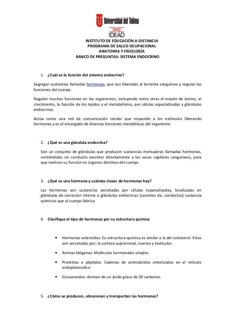 INSTITUTO DE EDUCACIÓN A DISTANCIA PROGRAMA DE SALUD OCUPACIONAL ...