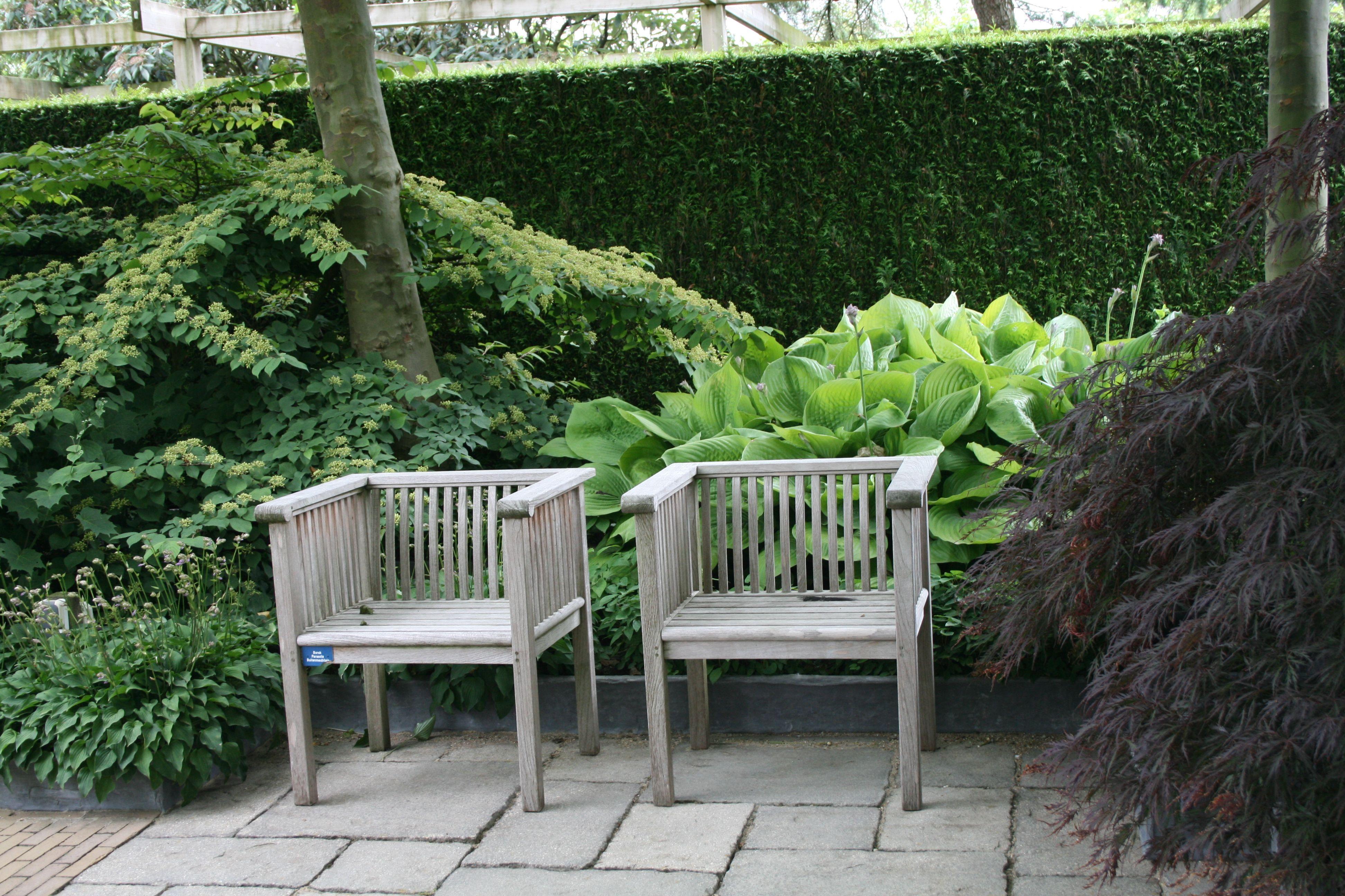 Sitzplätze Im Garten gartenreise sitzplätze im garten hostas ahorn hecke