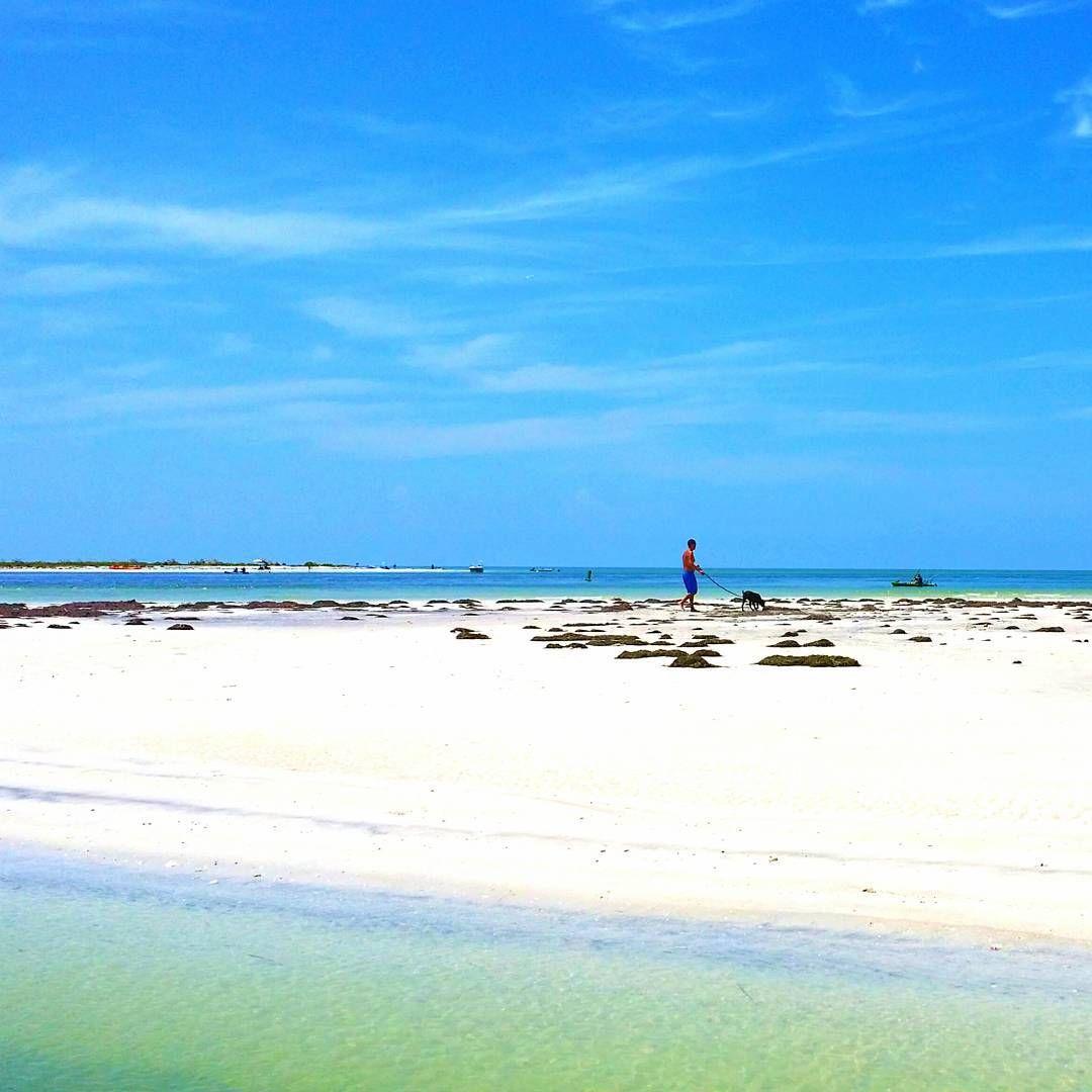 Caladesi Island Florida: Caladesi Island State Park In The