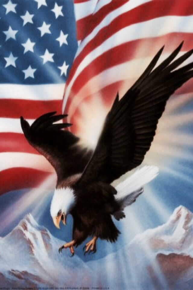Iphone Wallpaper 4th Of July Tjn Bald Eagle God Bless America America