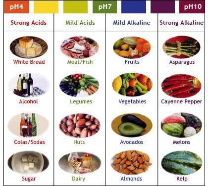 Ph Chart For Foods  Acid And Alkaline Food Chart    Ph