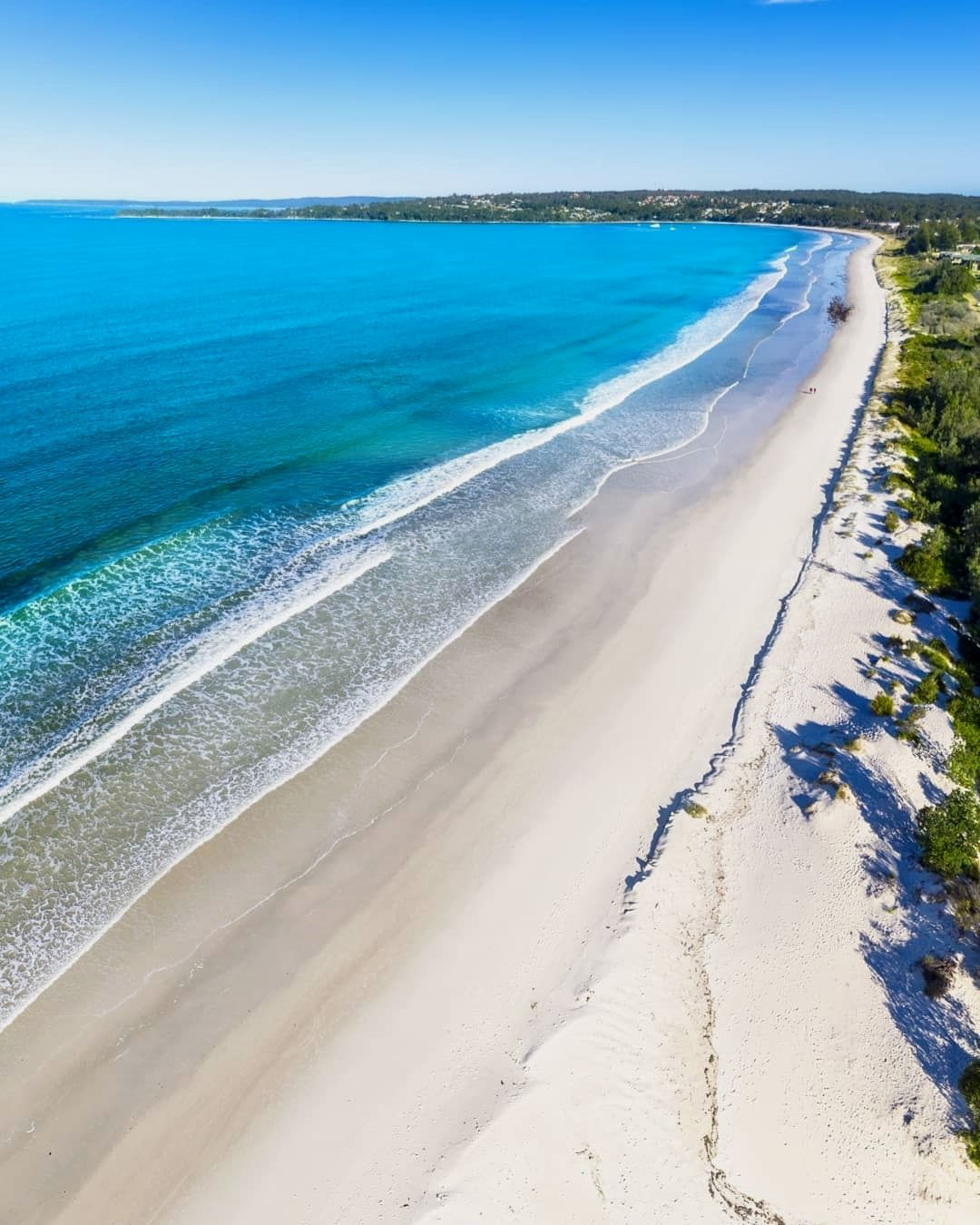 Check out those gorgeous white sands of Jervis Bay! Always stunning, especially from above. I did look out for some dolphins but no such luck unfortunately. Still such a cool place there. ⛵ 🌊 - _________________________________ - #exploringaustralia #australia_shotz #dronenature #takemetoaustralia #ig_shotz #ozscapers #ig_australia #itsamazingoutthere #droneglobe #focusaustralia #aussie_images #dailybaileynsw #tv_australia #amazing_australia #amazingausnz #skysupply #ig_discover..