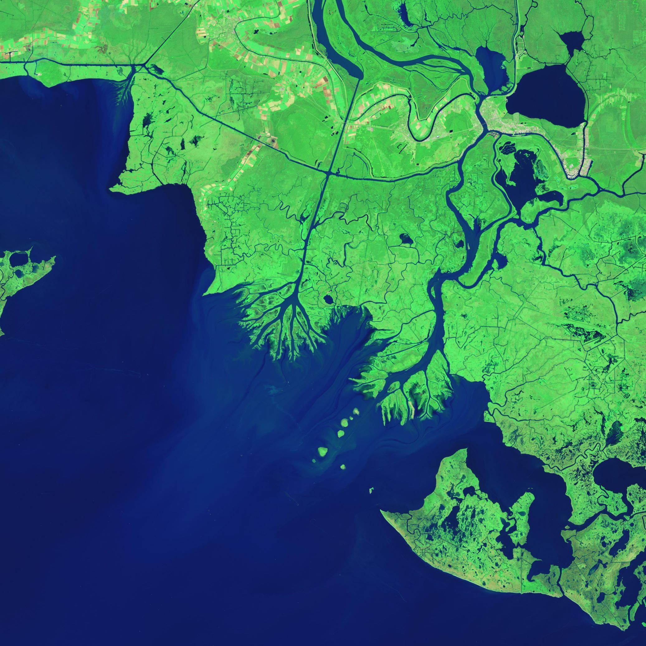 Growing Deltas In Atchafalaya Bay The Delta Plain Of The - Mississippi river delta map