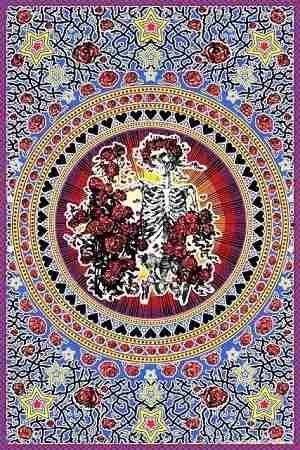 Sunshine Joy Grateful Dead Skull /& Roses Bandana
