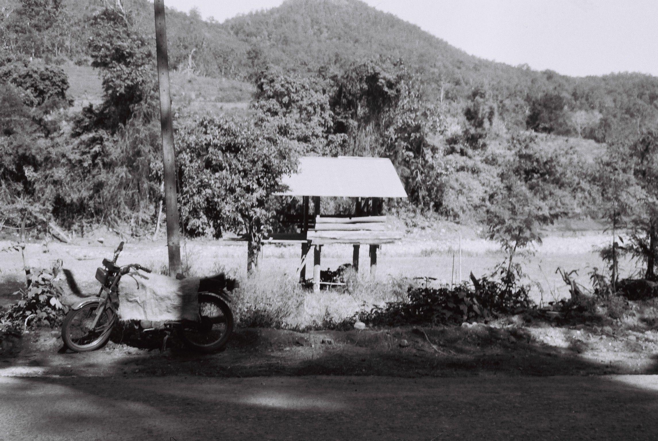 Pai Jan 2006