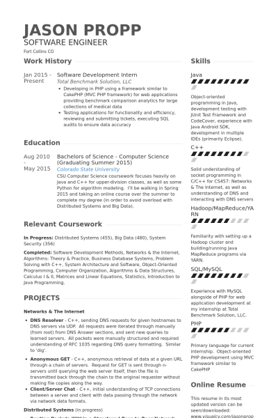 Web Development Internship Resume  The Best Estimate Connoisseur