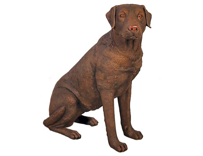 Fibreglass Brown Labrador Dog Statue Sitting Dimensions