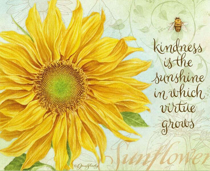 Jane Shasky. Kindness   Flower quotes, Sunflower quotes ...