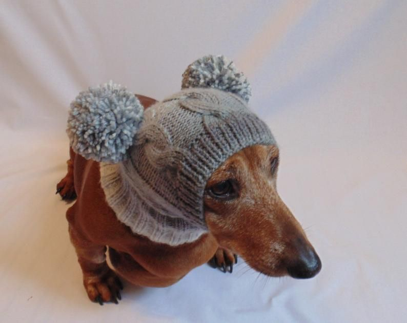 Knitted Hat For Dog With Hearts And Two Pompons Etsy Dog Hat Dachshund Hat Dog Clothes