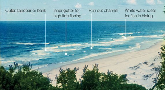 17 best images about fishing surf on pinterest | surf, search and, Fishing Bait