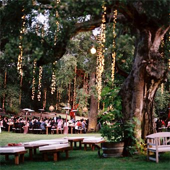 hanging tree lights for outdoor reception & hanging outdoor lights.... dramatic. and not too tough to hang ahead ...