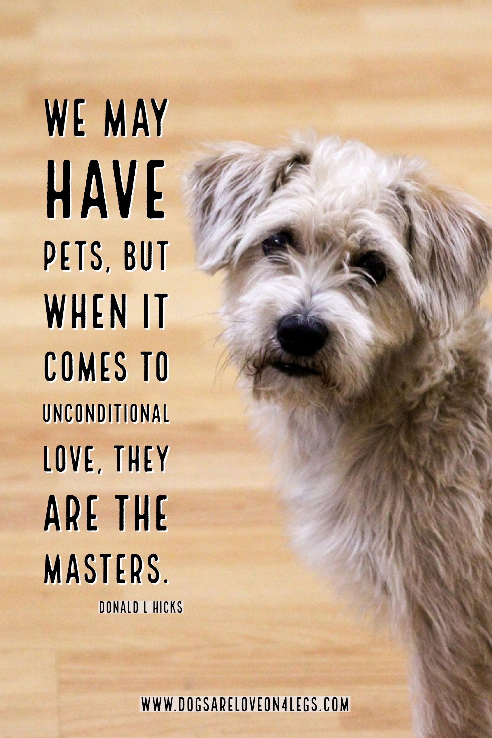 Dog Quote We May Have Pets Dog Dog Quotes Inspirational