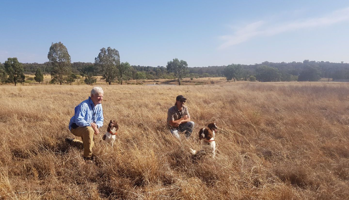 Conservation Detection Dog Handling One Dream Job To Another