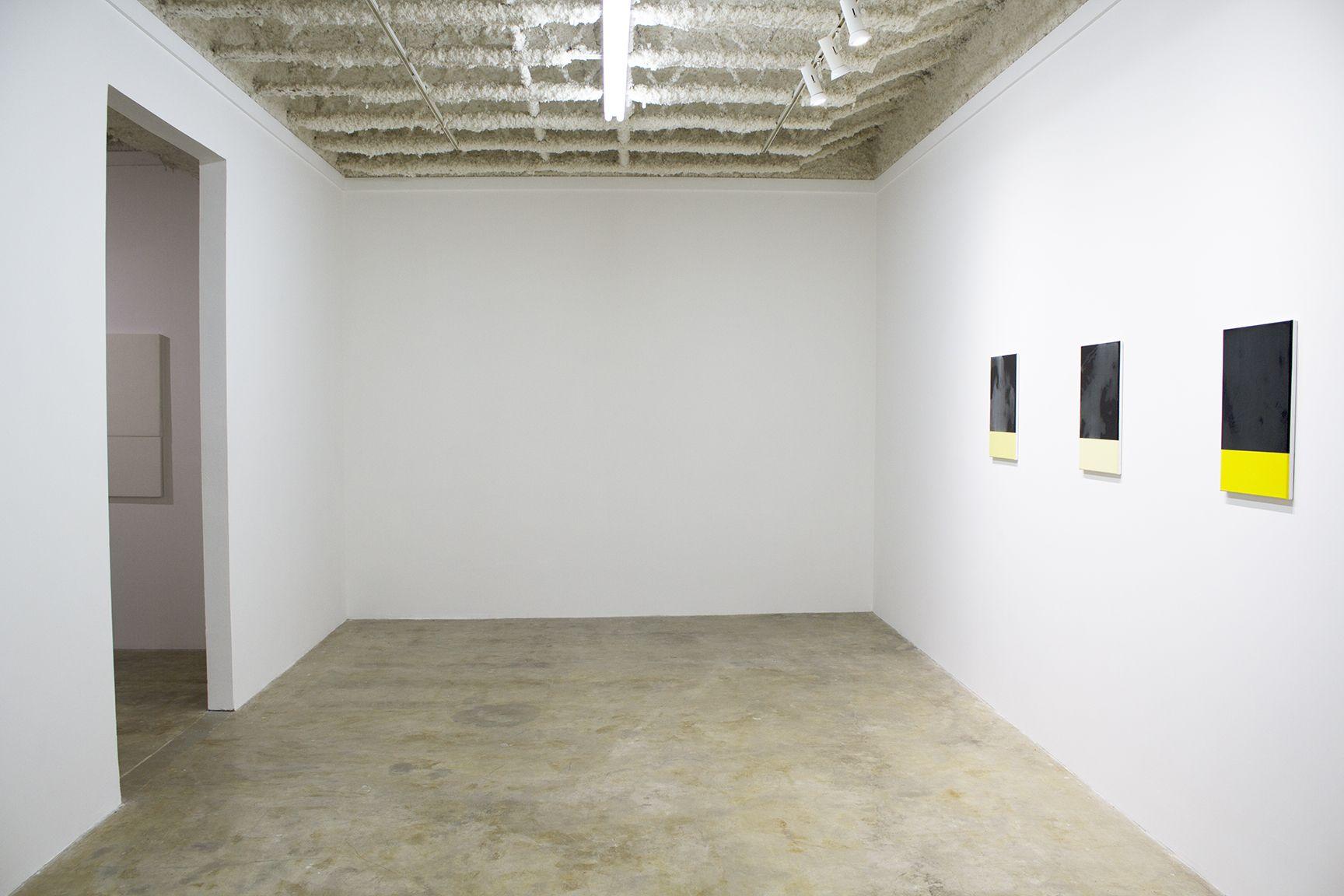 Installation at Gray Contemporary