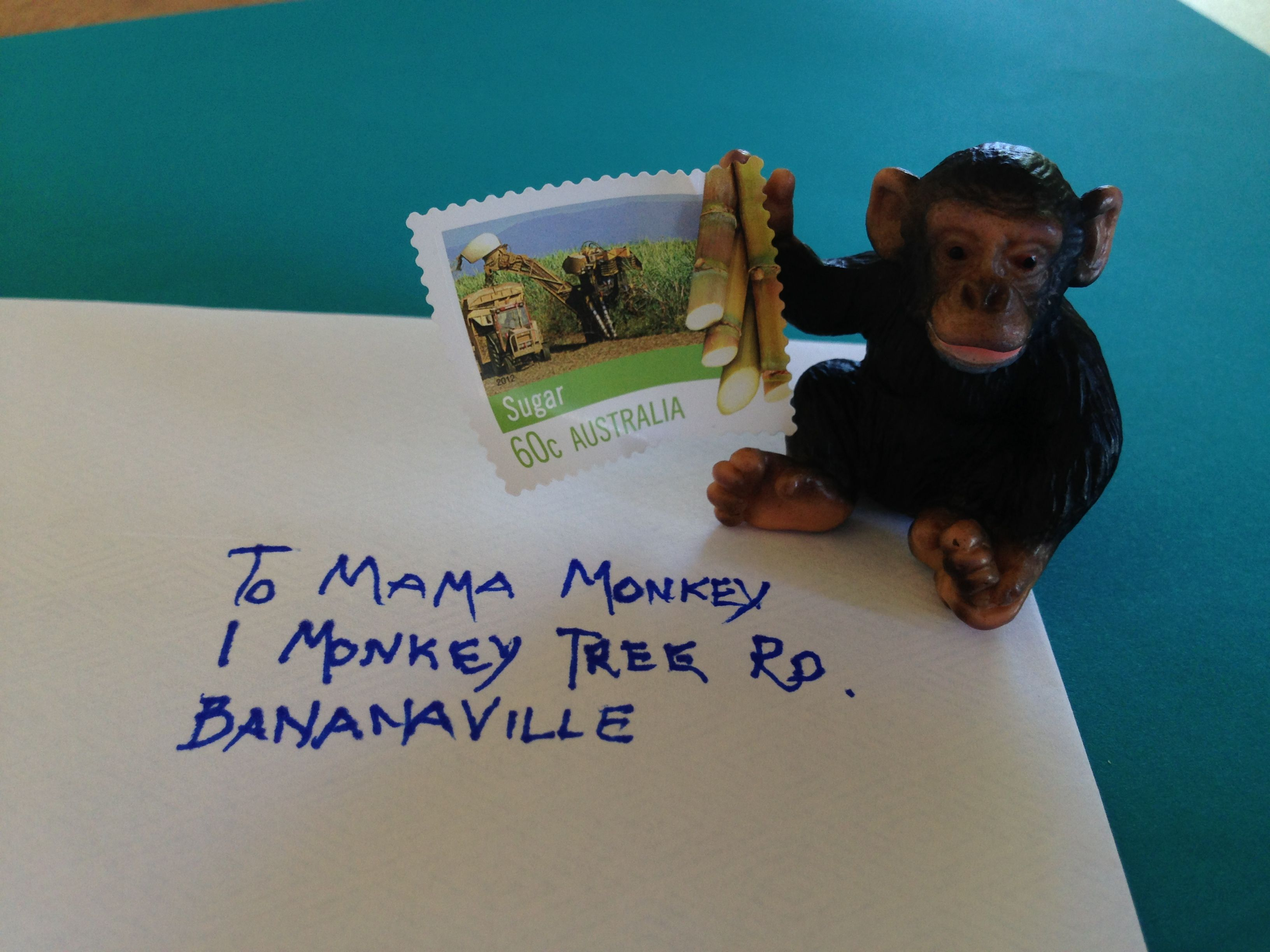 Monkey Sending Letter To His Mama In Bananaville Monkey
