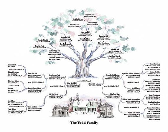 Genealogy Trees Genealogy, Ancestry and Family trees - family tree chart template