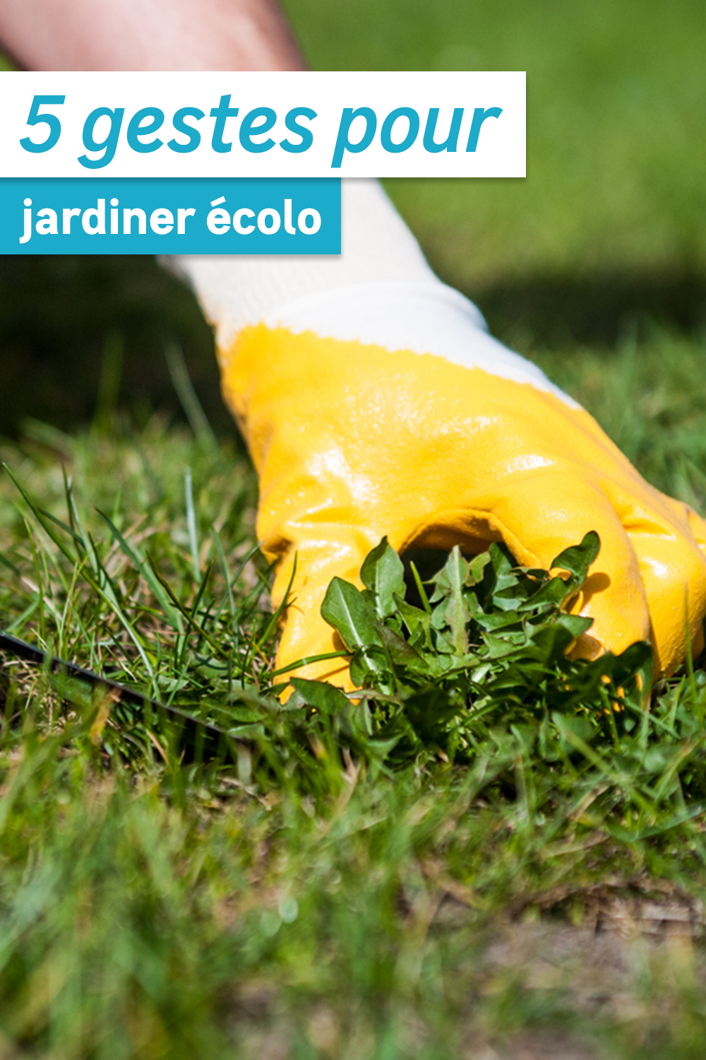 Nos Idees De Jardinage Ecolo En 2020 Faire Son Compost Jardinage Bio Idees De Jardinage