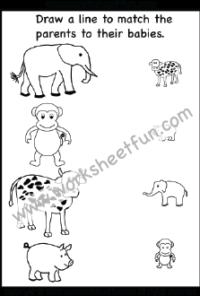 Preschool Matching Worksheets / FREE Printable Worksheets