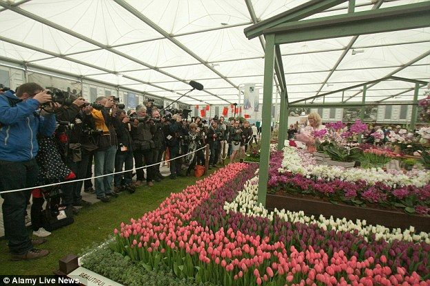 The M&S RHS garden also aims to educate the public on environmentally friendly farming pra...